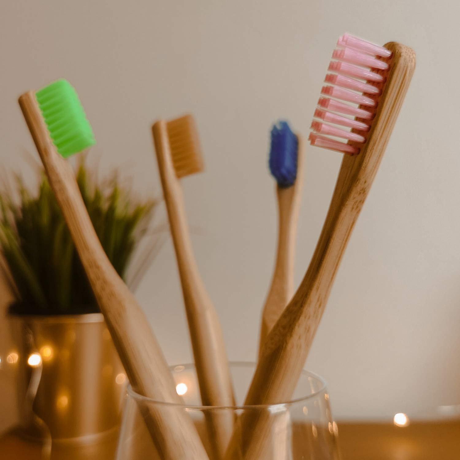 Brosses à dents réutilisables